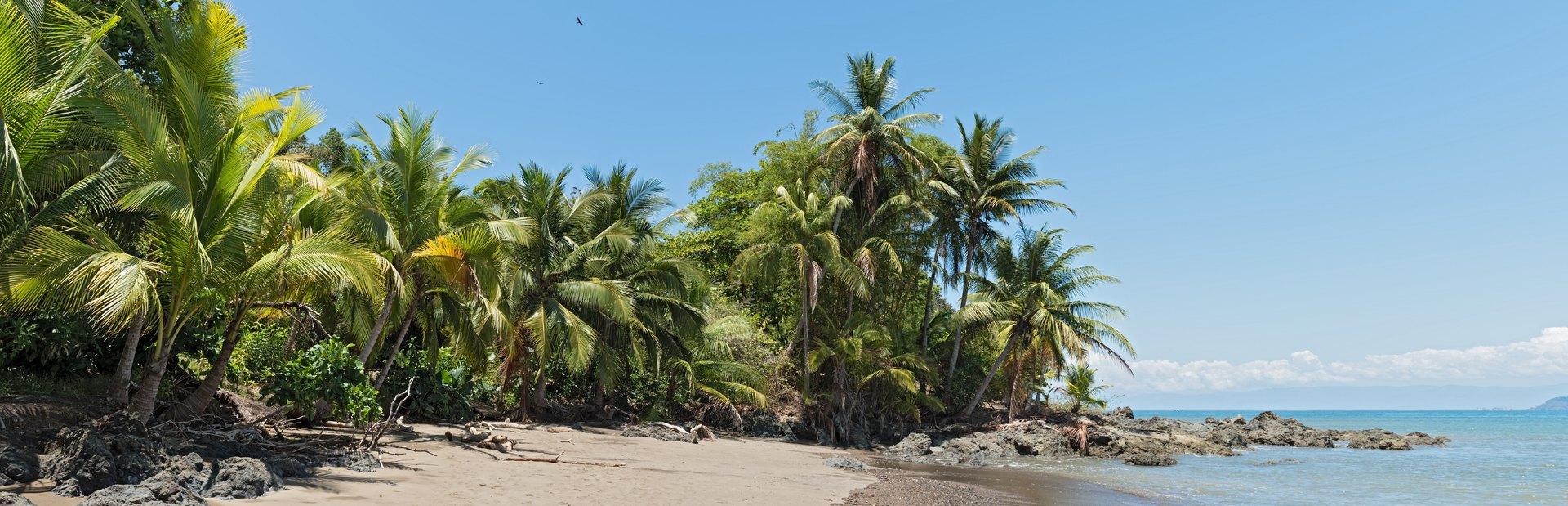 Drake Bay (Bahía Drake) Image 1