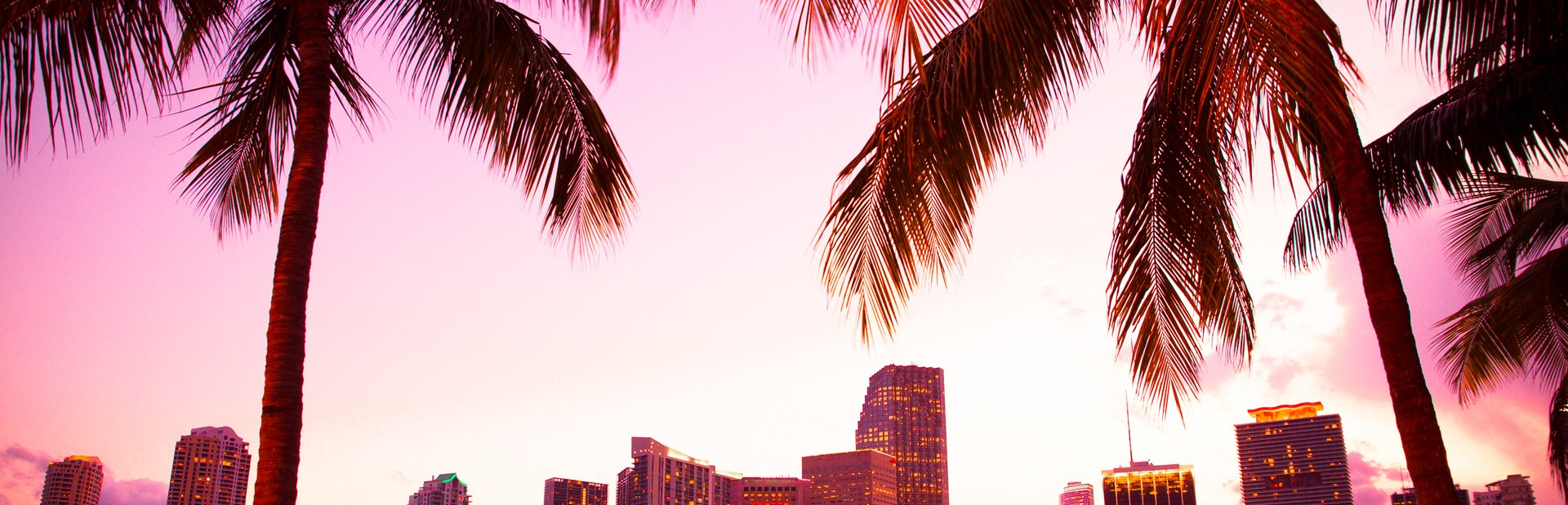 6 of the Best Things to do on a Miami Yacht Charter