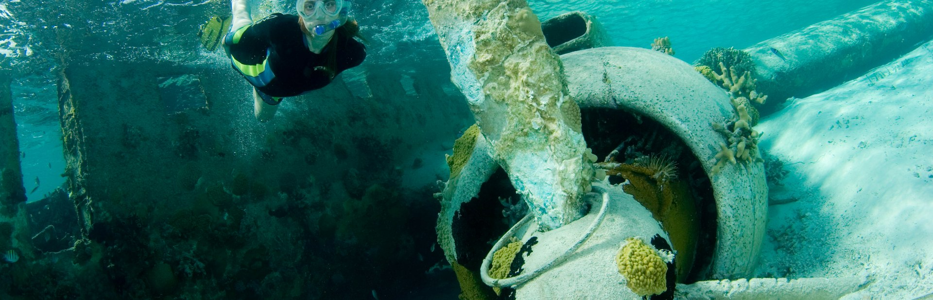 The Staniel Cay Plane Wreck Image 1