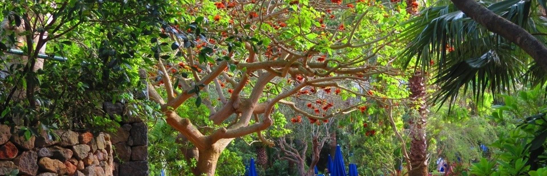 Negombo Thermal Gardens Image 1