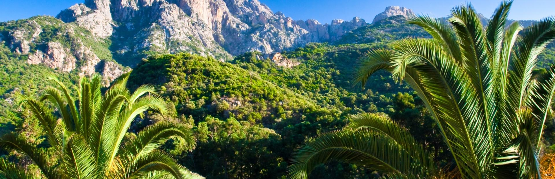 Things to see & do inCorsica