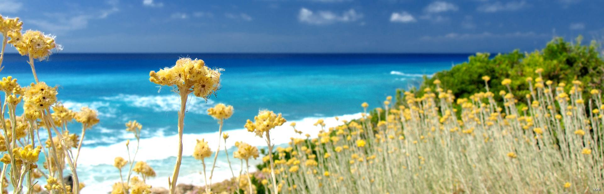 St Tropez guide
