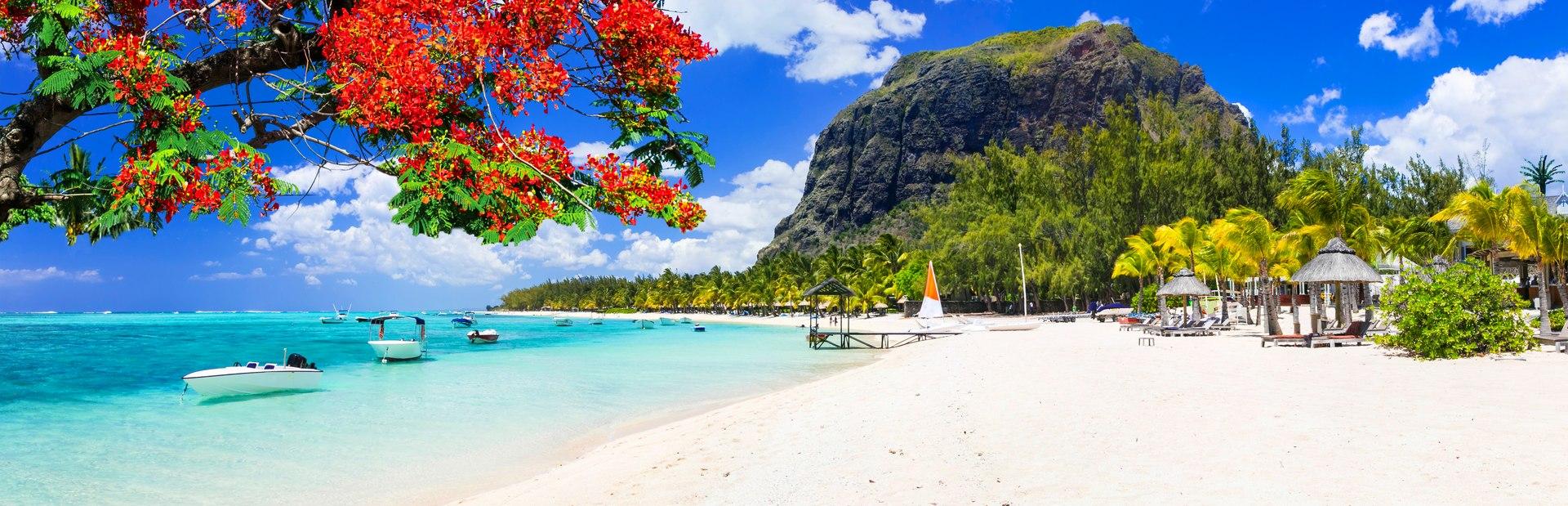 Indian Ocean guide