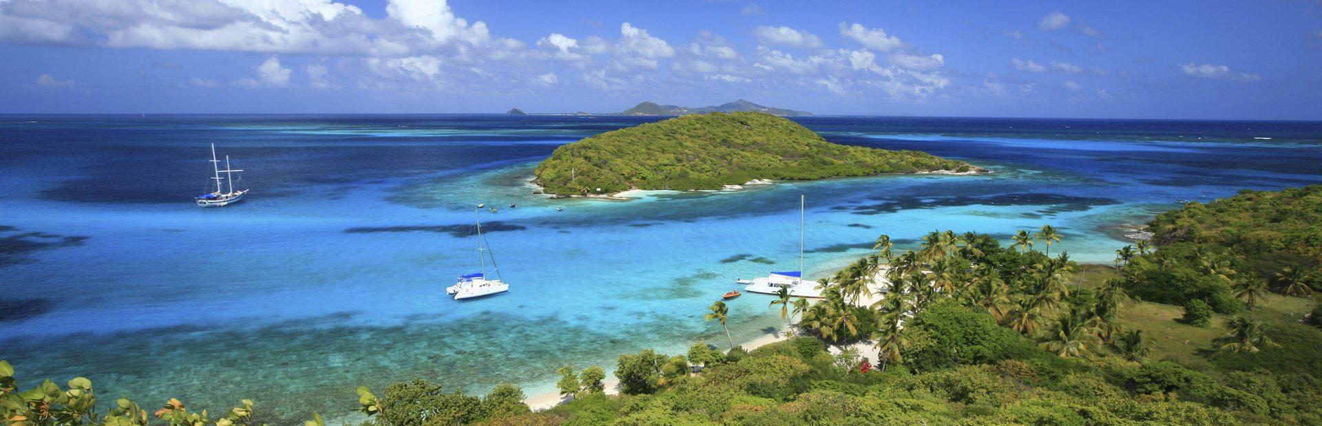 Tobago Cays guide