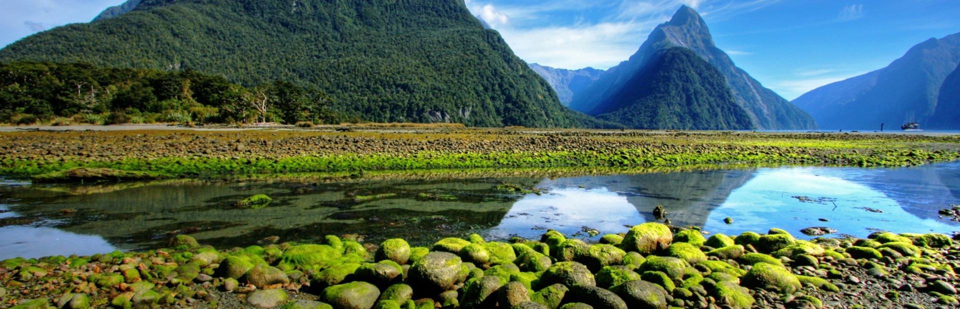 Find Yourself Enchanted by New Zealand