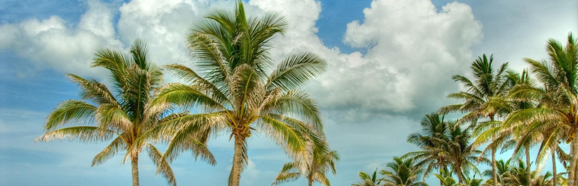 Nassau climate photo