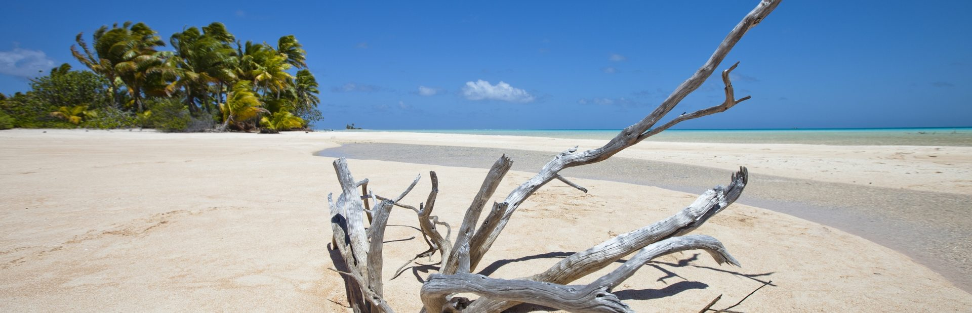 Windward Islands guide