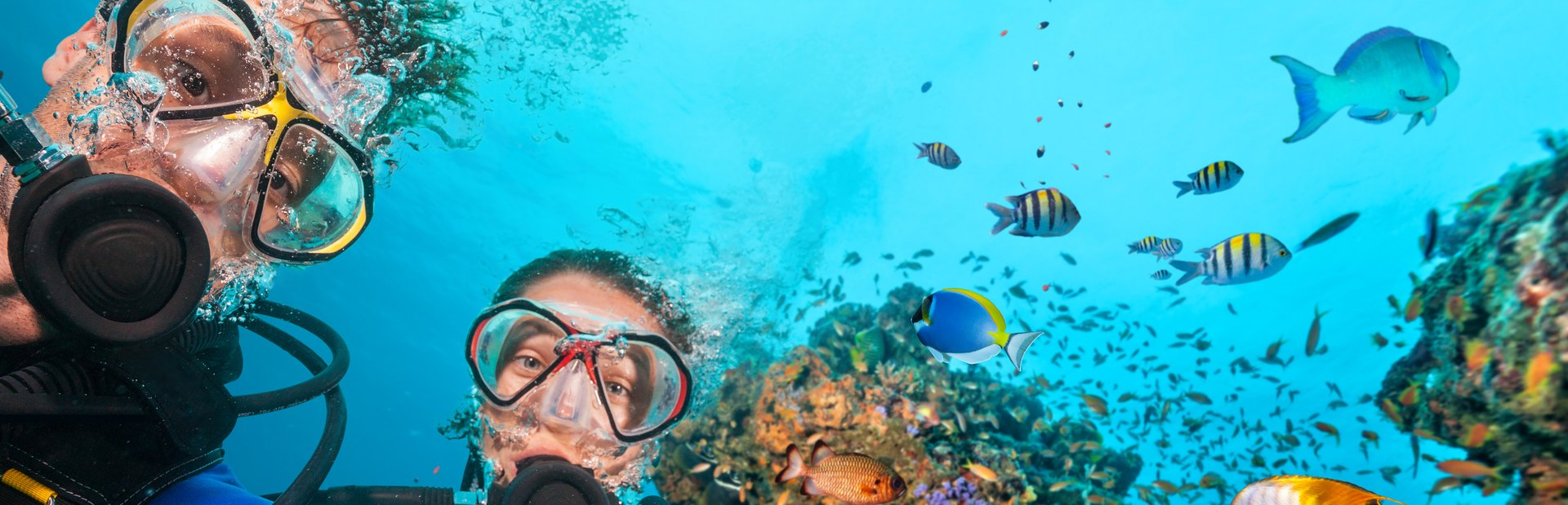 Things to see & do in the Maldives