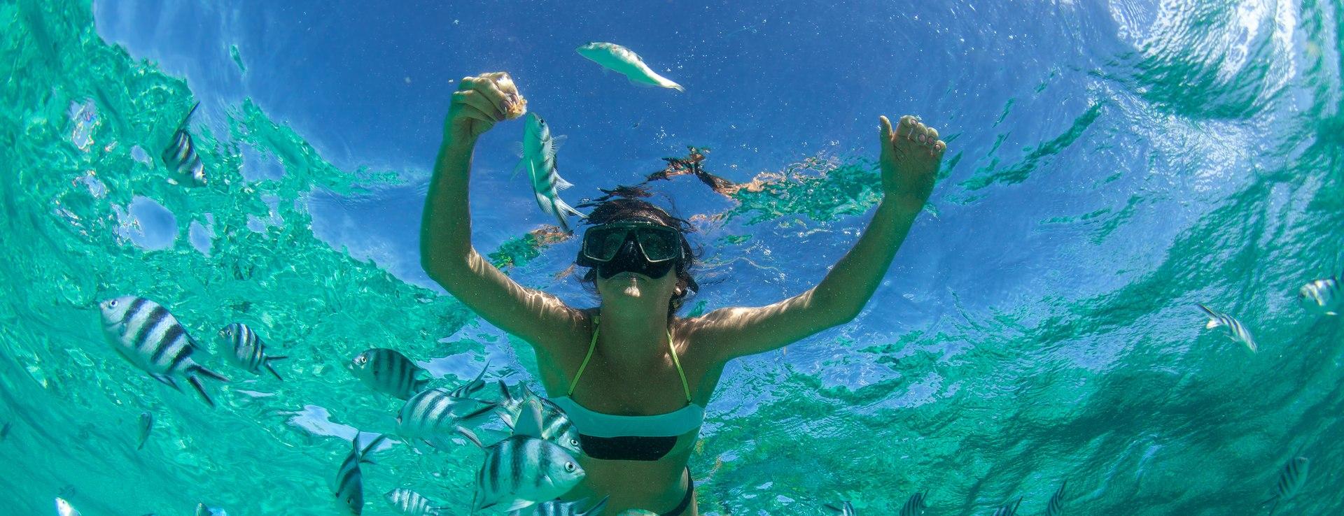 Private Reef Snorkeling Image 1