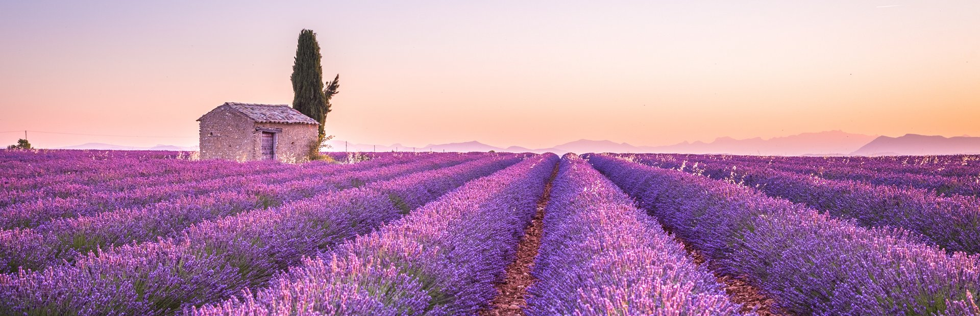 South of France inspiration and tips