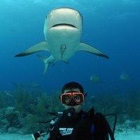 Dive Sites Photos