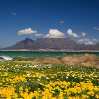 Southern Africa Guide