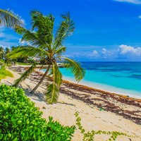 Abacos Islands Guide