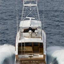 Big Dog Yacht