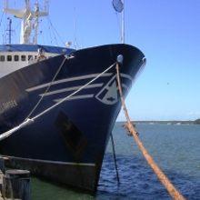Sarsen Yacht Moored
