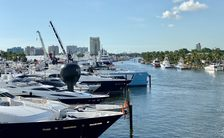 FLIBS 2019: A vintage year?