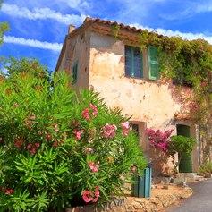 French Riviera photo 29
