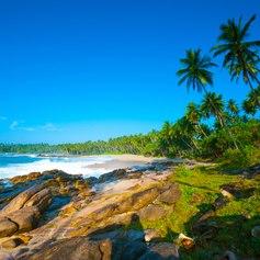 Sri Lanka photo 6