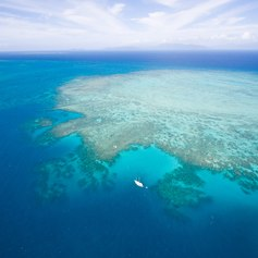 Great Barrier Reef photo 42