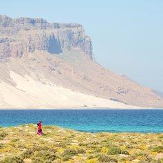 Socotra photo 34