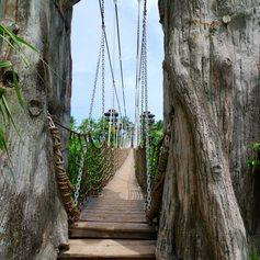 Looking dangerous suspension bridge