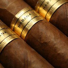 A selection of Cuban cigars