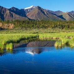 Alaska photo 30