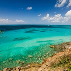 Discover an Enchanting Underwater World in Antigua