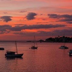 Yachts on the ocean in the red light of setting sun