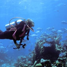 Female diver admiring the bottom of the sea