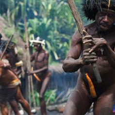 Papuan tribal dance