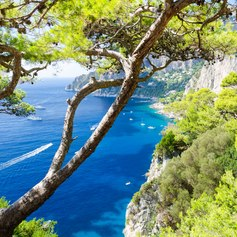 West Mediterranean photo 46