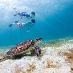 Bahamas photo 18