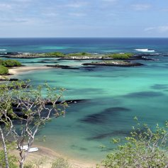 Galapagos Islands photo 16