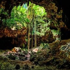 New Caledonia photo 24