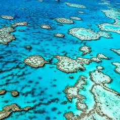 Great Barrier Reef photo 7