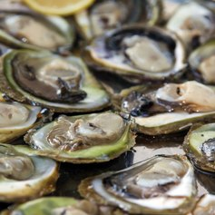 Enjoy Sea-to-table Cuisine