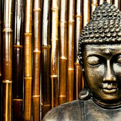 Admire Breathtaking Statues of the Buddha