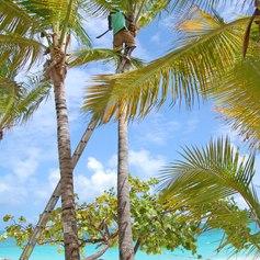 Soak up the Sun on an Antigua Yacht Charter Vacation