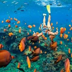 Maldives photo 36