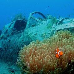 Zero wreck in Papua New Guinea