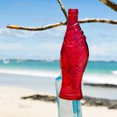 Galapagos Islands photo 18