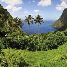 St Lucia photo 6