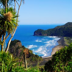 Journey to the West Coast on Your Luxury Yacht Charter in New Zealand