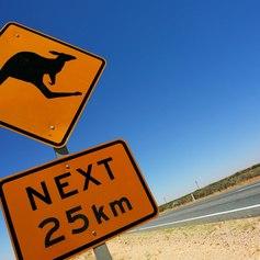 Sign indicating about kangaroos