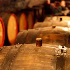 Sample Famous Croatian Wine