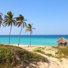 Palm trees on Playa Megano