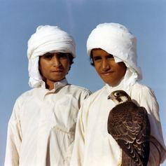 Arabian Gulf photo 29