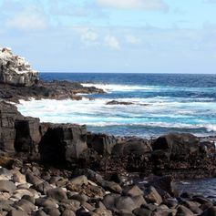 Galapagos Islands photo 31