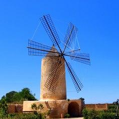Mallorca photo 24